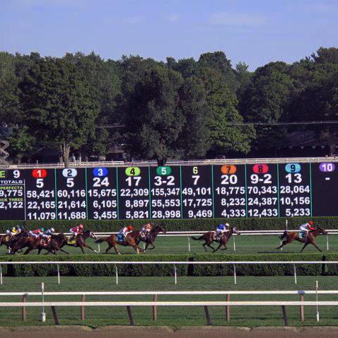 races-e1500384465670.jpg