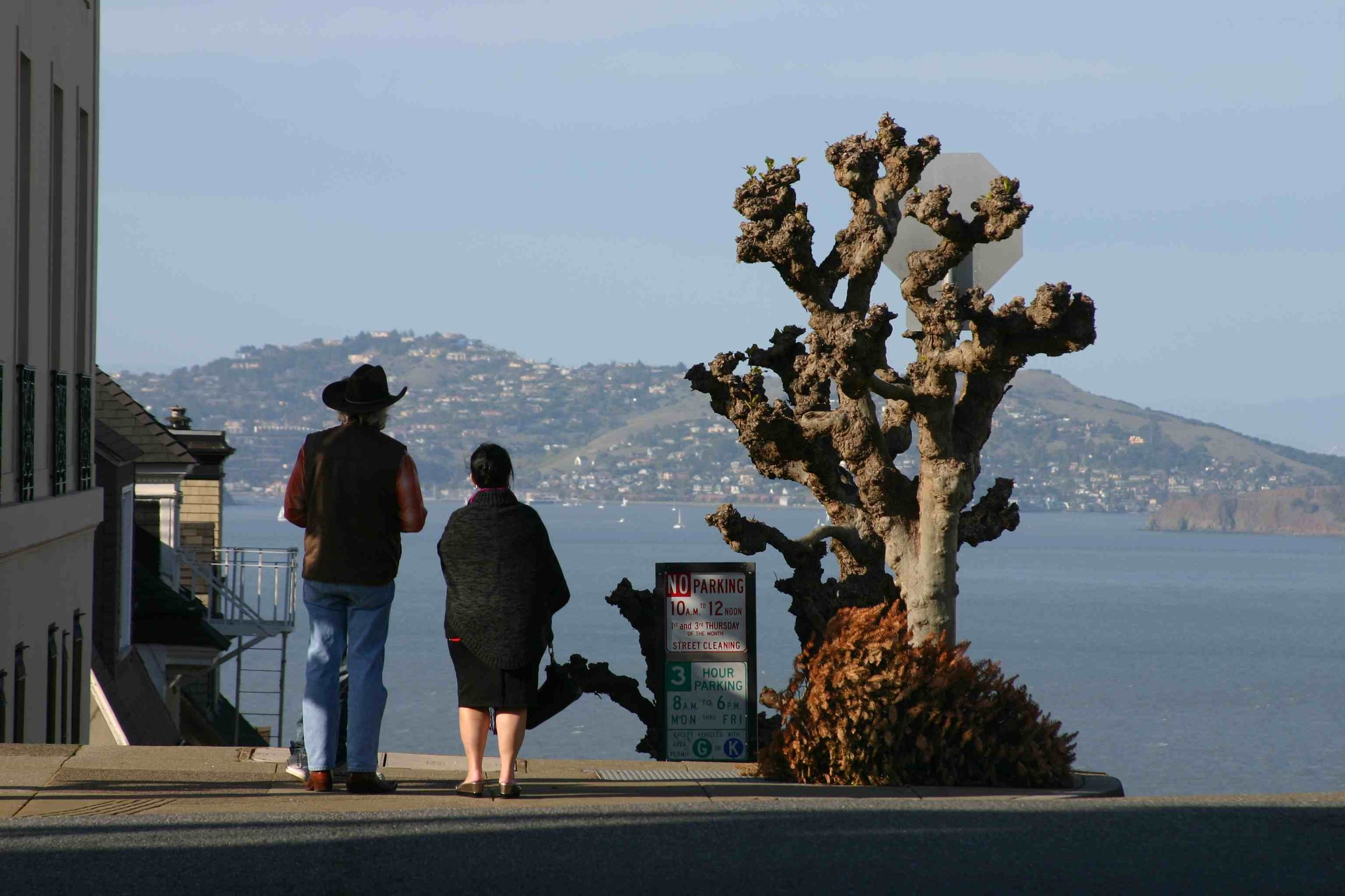 Pacific Heights, San Francisco, February 2012, Photo Credit: Kate Gallery