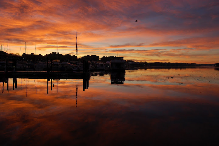 Sunrise, Gangplank Marina, Washington, DC. Credit: Jason Kopp