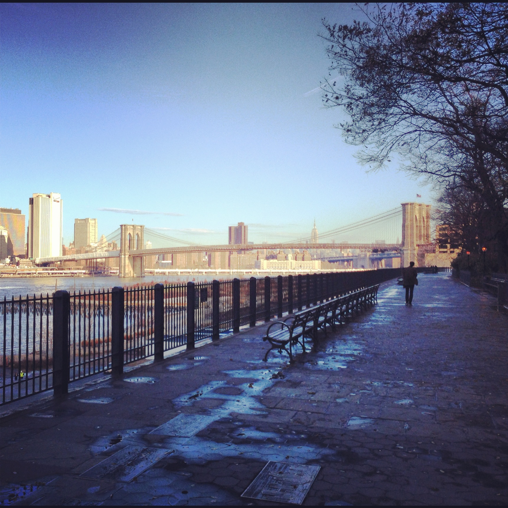 Brooklyn Heights Promenade, December 2012