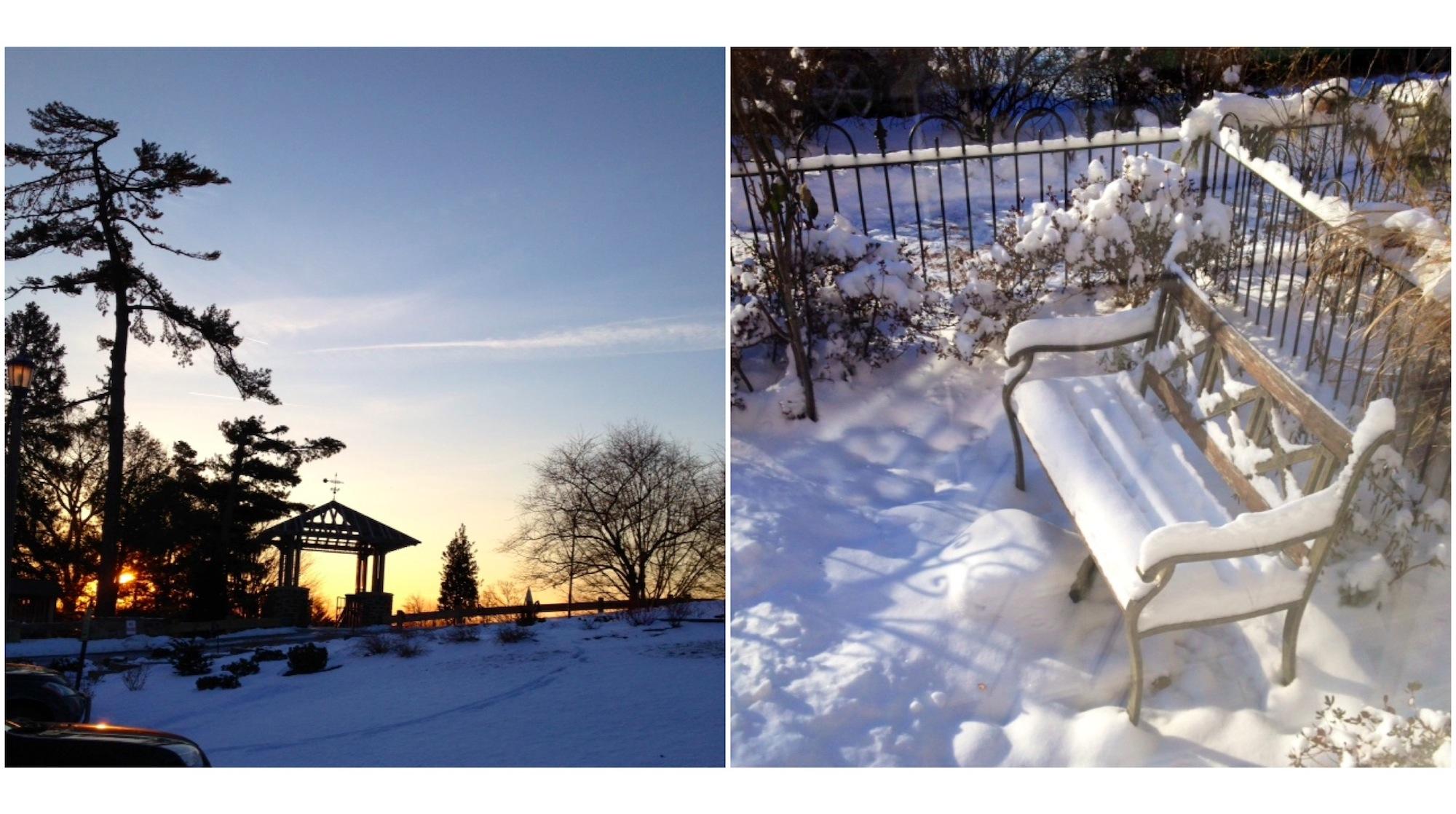 wintercol2