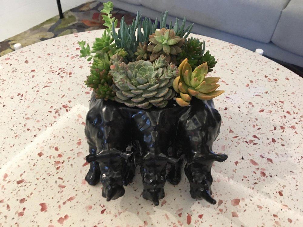 Rialheim Triple Rhino Bowl