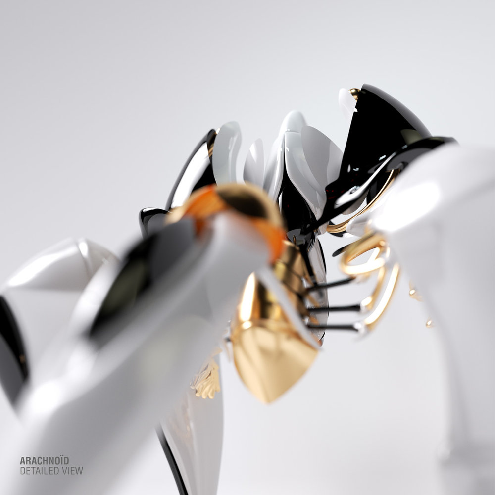 Arachnoid2.jpg