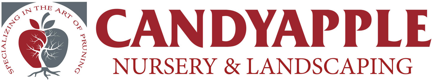 Candyapple Nursery & Landscaping