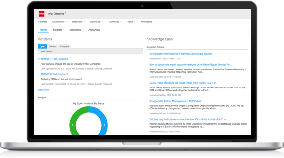 Infor Xtreme is a complex system to navigate, with layers of tabbed navigation. Much of the relevant information that a user needs are hidden.