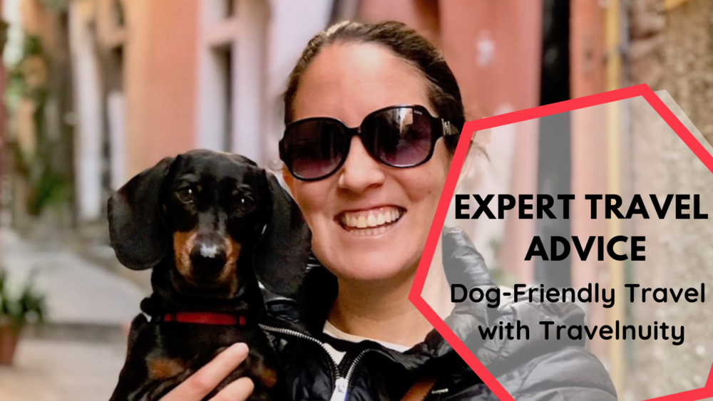 Looking to travel full time? Learn what the experts have to say in our travel blogger interview series. This week we hear from Shandos with Travelnuity about dog friendly travel.
