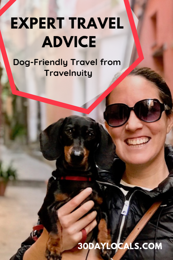 Looking to travel with your dog, but not sure where to start? Learn from the experts and those who have done it before in our travel blogger interview series. Today we learn from Shandos Cleaver of Travelnuity - a dog owner who combined her love of her dog with travel. Now she is traveling full time while writing about her experiences and helping other dog parents do the same. #dogtravel #travelwithdogs #fulltometravel #traveltips