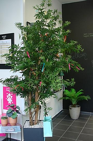 Solidariteitsboom - Het symbool van kanker is een lintje.Bomen dienen als symbool om herinneringen levend te houden. Al eeuwen plant de mens bomen bij bijzondere gebeurtenissen. Geboorte, overlijden, religieuze feesten, vertrek van een geliefde, vriendschapsboom ... . De plaats waar een boom geplant is wordt veelal een ontmoetingsplek of rustplaats.BOfort nam een kunstboom in huis. Dit is onze solidariteitsboom. Bezoekers geraakt door kanker kunnen, geheel vrijblijvend, een lintje in de boom hangen voor hun naaste vechters, voor zichzelf of ter nagedachtenis aan hun dierbaren.