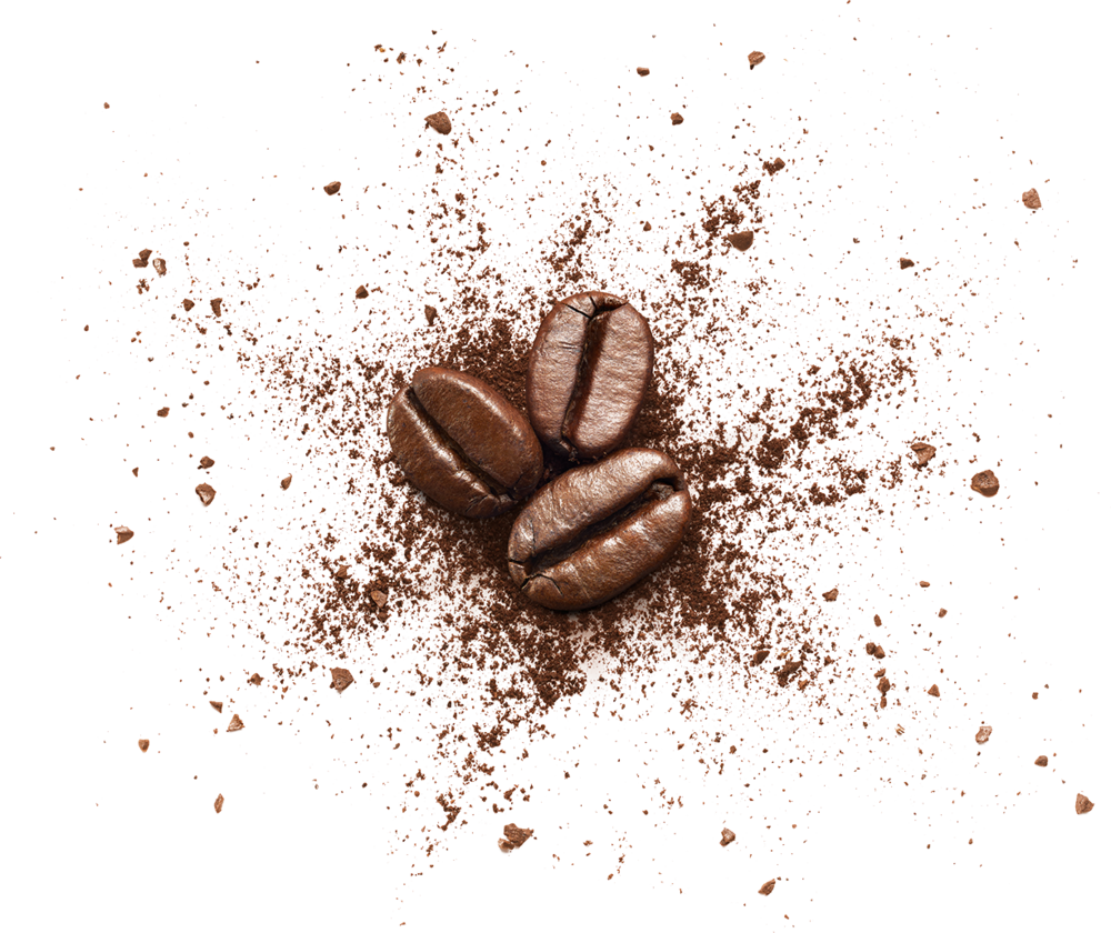 beans-dd-thins.png