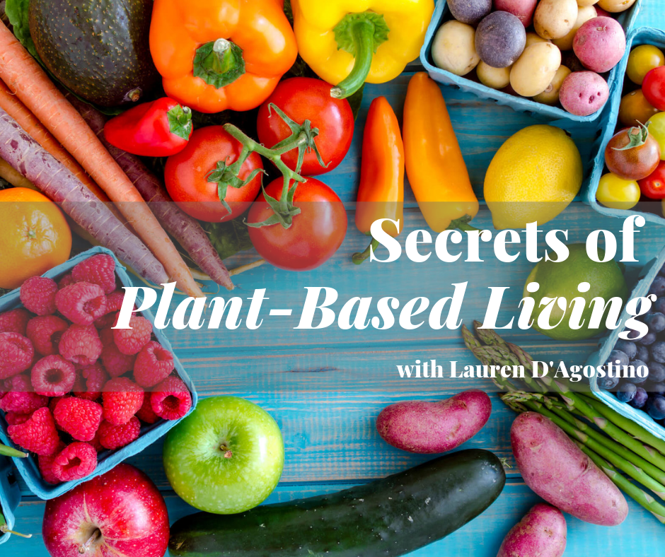 Join Lauren at Plantz Cafe in Dracut! - Visit www.plantzcafe.com or search Eventbrite for all upcoming events. Follow the Plantz Cafe Facebook page for updates and announcements!