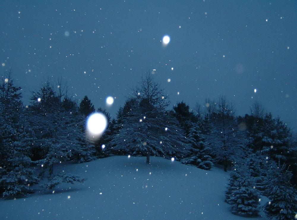 winter_stillness.jpg