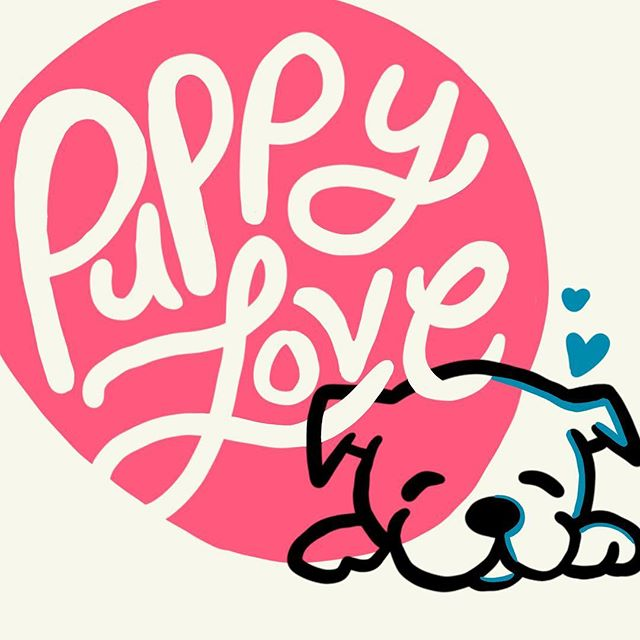 Imagine if the whole world loved as endlessly and purely as dogs!!! 💗  If you're lucky enough to have some puppy love in your life, treat them special ALWAYS (and maybe throw in an extra puppuccino this week 🥰🐶) #WayToBeAValentine . . . . . . . . . #puppylove #puppiesofinstagram #puppuccino #dogsofinstagram #lettering #procreatelettering #illustration #valentinesday2019 #rufflife #womenwhodraw #femaleillustrator #womenofillustration #handlettering