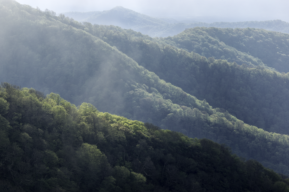 Sunlight on the Craggy Mountains Blue Ridge Parkway, NC  2018
