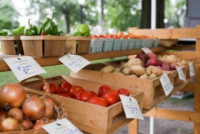 BIRDSONG FARM | Organic Produce