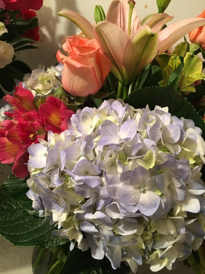 ART N' FLOWERS | Fresh Cut Flowers
