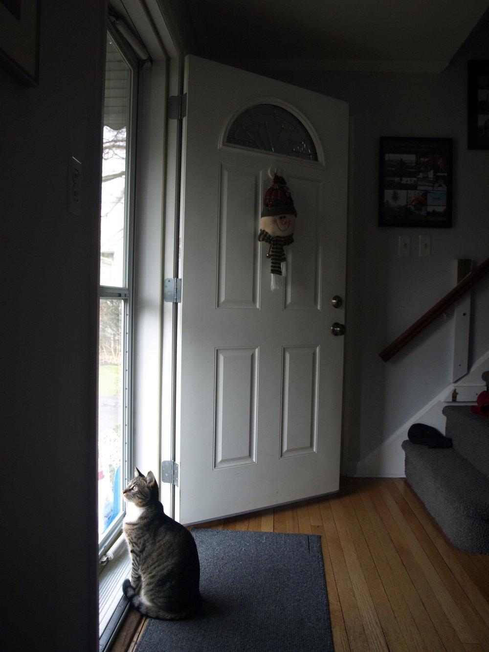 #front_door