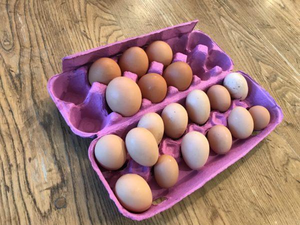 all-the-eggs-600x450.jpeg