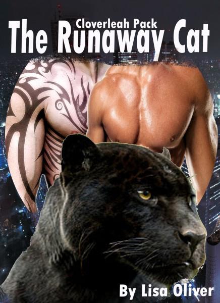 Runaway Cat Cover