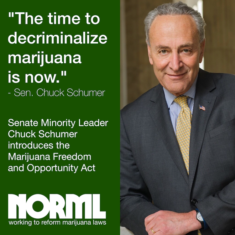 Schumer-Act.png