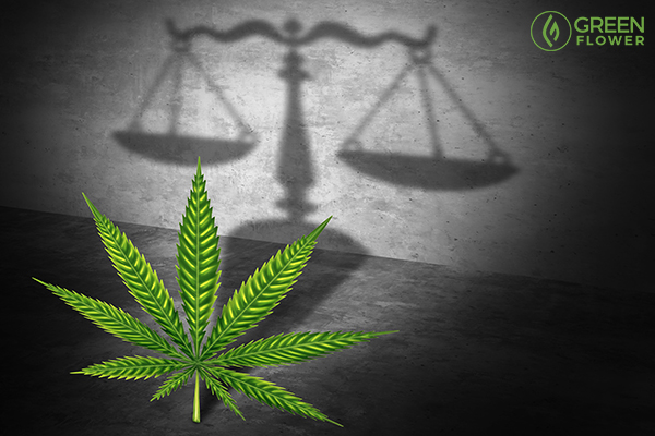 Legal hemp will be heavily regulated, however, it may also clear the way for a lift on federal cannabis prohibition.