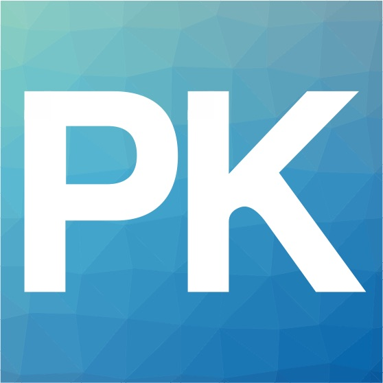 PK Information | Business Consulting & Software