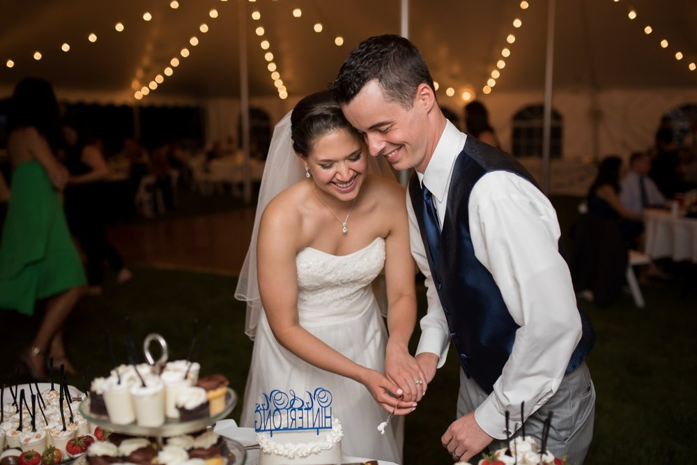 Naperville Cake Cutting, Simple Cake