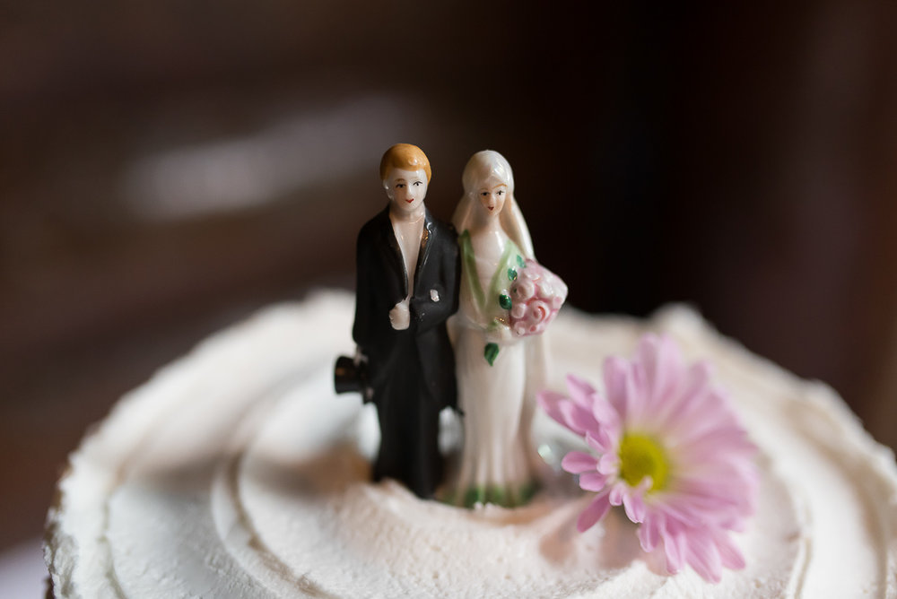 starved-rock-wedding-photographer-479-of-869.jpg