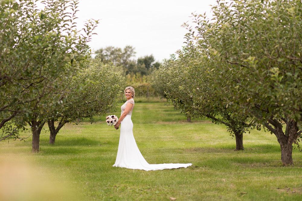 Maple Park Wedding Photographer, Acquaviva Winery Wedding, Acquaviva Winery Wedding Photographer (38 of 177).jpg