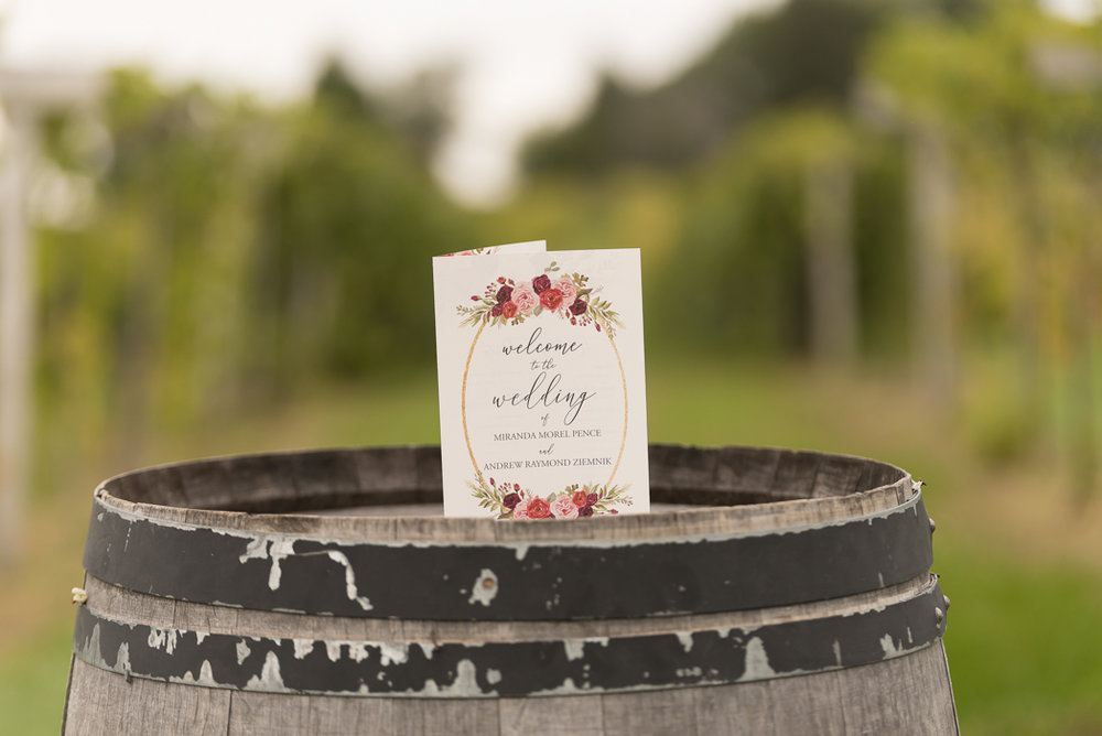 Maple Park Wedding Photographer, Acquaviva Winery Wedding, Acquaviva Winery Wedding Photographer (54 of 177).jpg