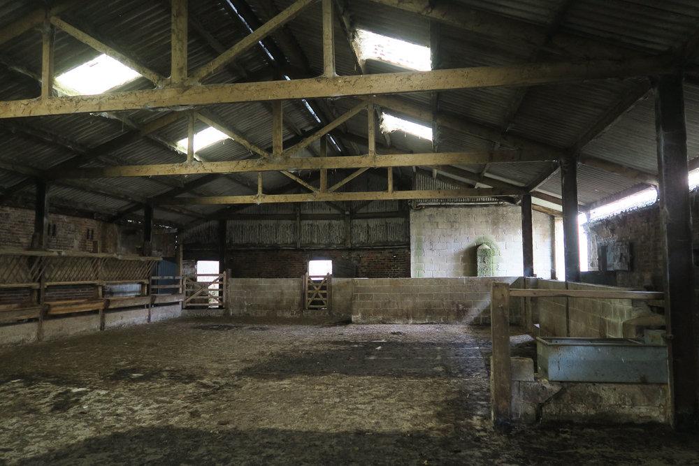Niven - Village Farm 4.jpg