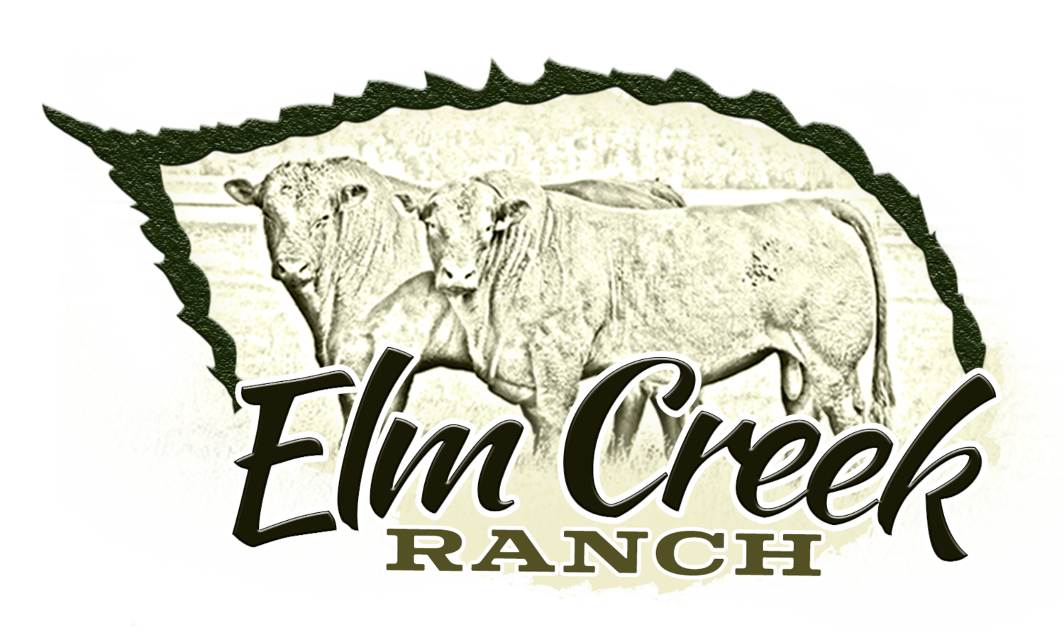 Elm Creek Ranch
