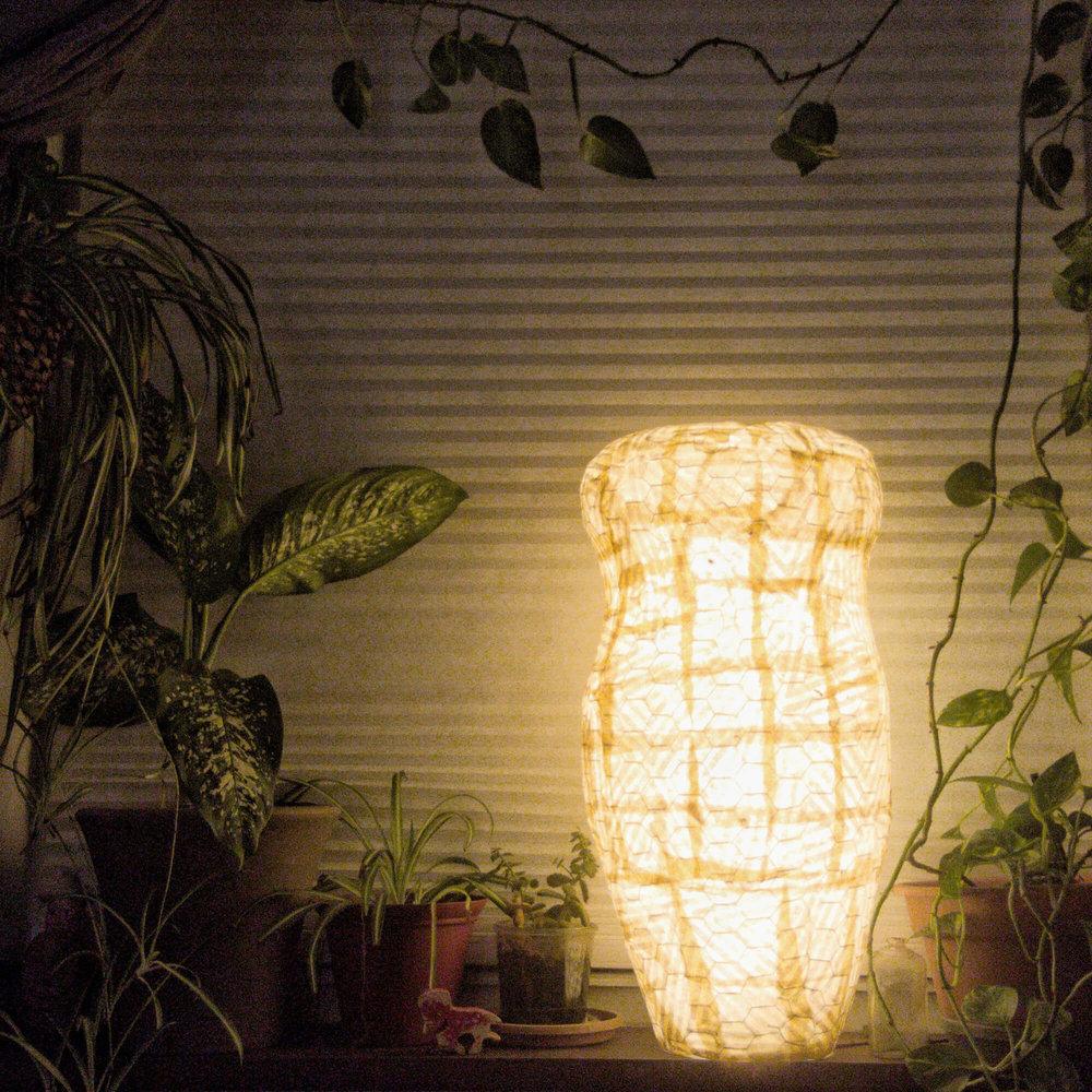 Triphora-luminaria1.jpeg