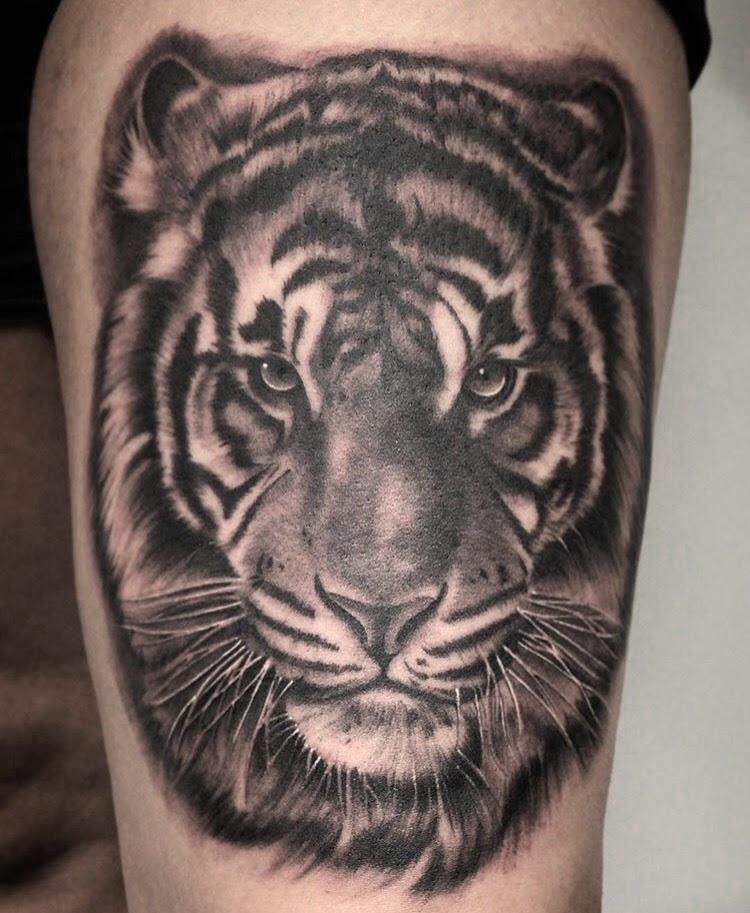 Custom Black and Grey Starring Tiger Head Portrait Tattoo by Salvador Diaz at Certified Tattoo Studios Denver Co.jpg