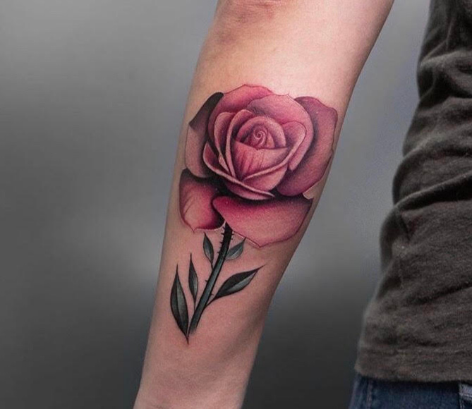 Custom Illustrative Pink Rose by Jean at Certified Tattoo Studios Denver Co.jpg