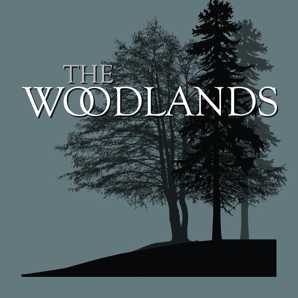 TheWoodlandsLight.jpg