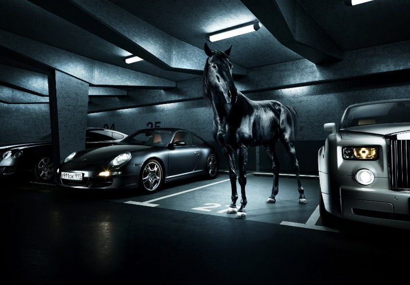 horse_001.jpg