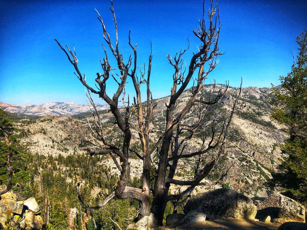 view of desolation off maggies peak