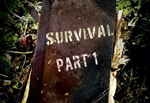 Survival Part 1