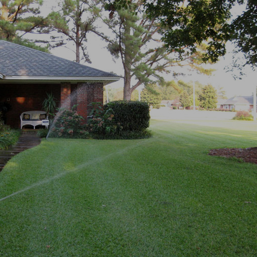 Landscaping - Get the lawn you've been wanting.