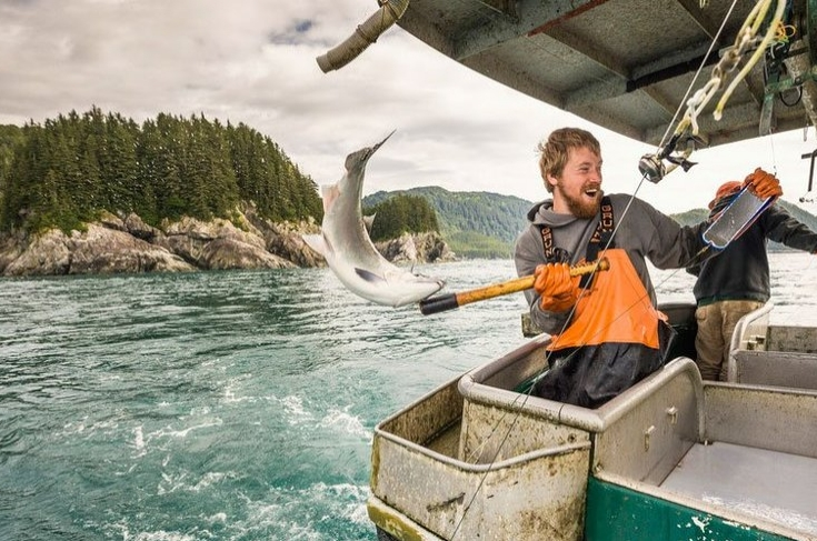 AKFN Jobs Board - Check out our very own Alaska Fishermen's Network Jobs Board to see the latest and greatest opportunities for working in the Alaska seafood industry.