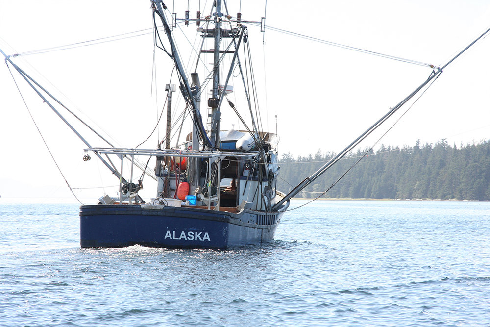 Ordering a Crew License - Are you engaged in commercial fishing? If so, you are required to have a crewmember fishing license. Check out this site to order your crew license and learn more about crewmember duties and exemptions.