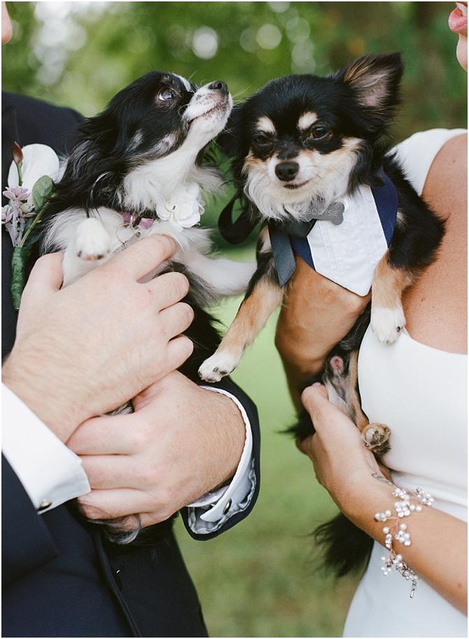 wedding || film photography || cara dee photography_0146.jpg