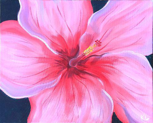 Hibiscus (Kelsey Lytle)-opt.jpg