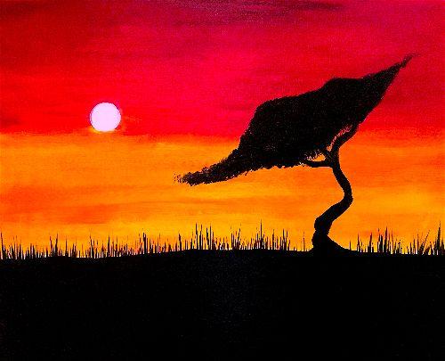 Sahara Sunset (Aziah McConnell)-opt.jpg
