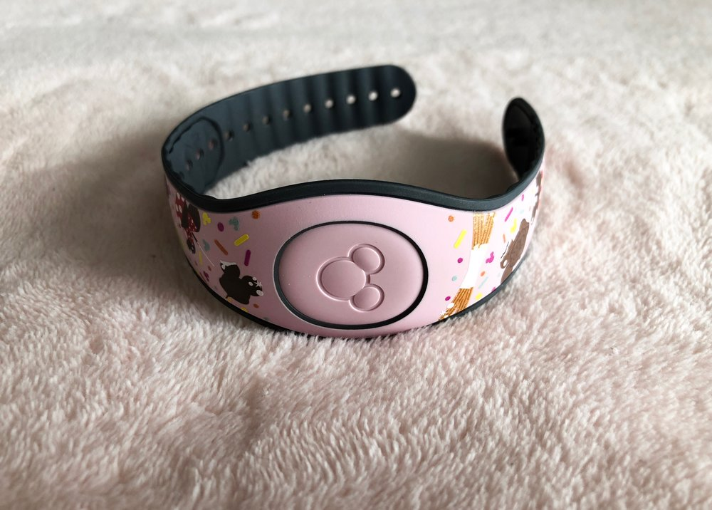 Magicband - Although this isn't technically inside my park bag, I always bring a Magicband with me. It's become a total life saver for me these past few years. I always use it for park entrance and Fastpass returns.