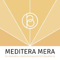 MediteraMera_logo.png
