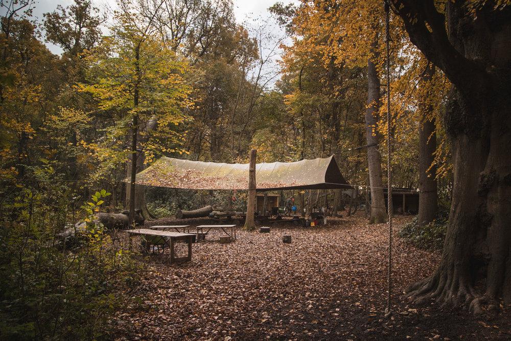 Hidden-Woods-beech-camp-web.jpg