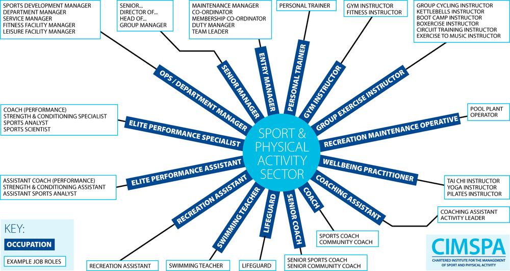Occupations Job Roles Diagram.png