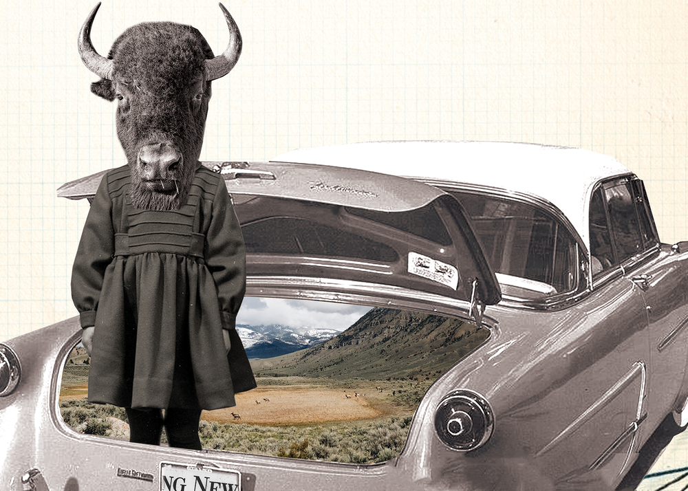 THE BUFFALO PLAY - BY CIARA GRIFFIN AND KENDRA MYLNECHUK POTTERDIRECTED BY MASON WAGNERMAY 8 - 23, 2019
