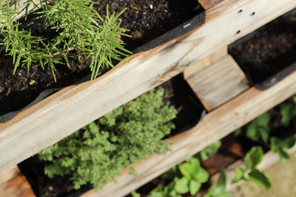 easy diy pallet planter for a small garden.jpg